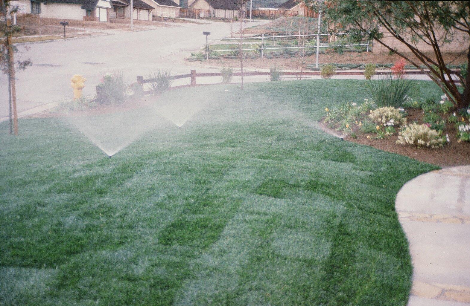 Watering New Sod